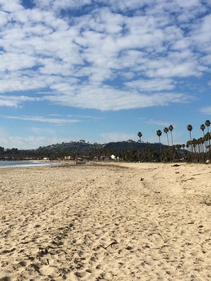 Palm trees, mountains and the beach. It is breathtaking in Santa Barbara.