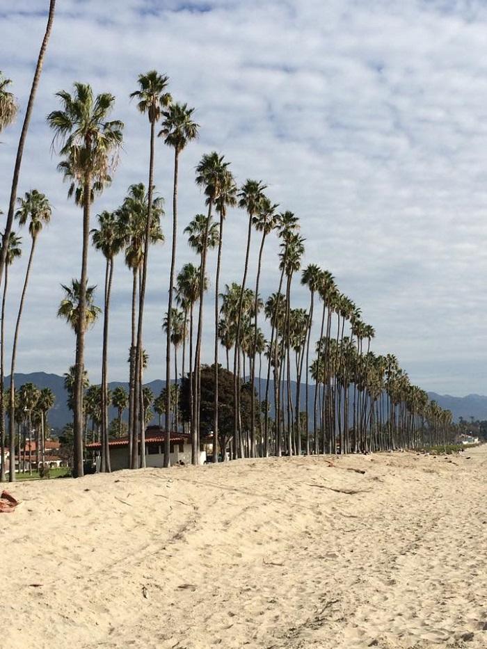 Much love, Santa Barbara. Much love.