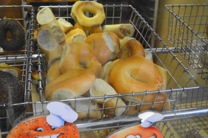 Lovely plain bagels on display at Bagels and Beyond.