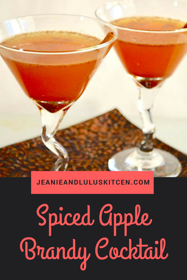 Spiced Apple Brandy Cocktail