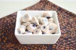 Frozen Yogurt Blueberries
